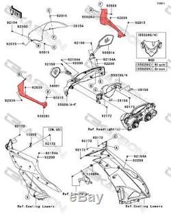 2009 2012 Les Enveloppes D'admission D'air En Fibre De Carbone Kawasaki Zx6r Recouvrent Des Tissages 2x2