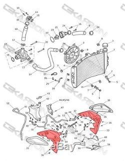 2011 2014 Triumph Speed triple Carbon Fiber Radiateur Couvre 2x2 Sergé
